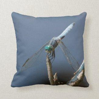 Sky blue dragonfly cushion