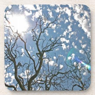 Sky Dead Tree Illuminations Beverage Coaster