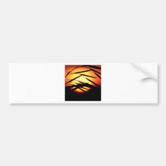 Sky Dewy Meadow Sunrise Oakland Michigan Bumper Sticker