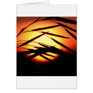 Sky Dewy Meadow Sunrise Oakland Michigan Greeting Cards