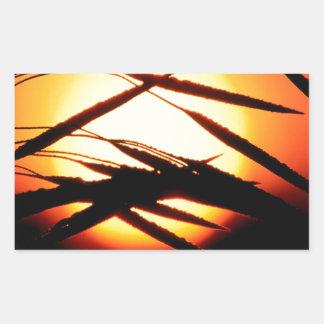 Sky Dewy Meadow Sunrise Oakland Michigan Rectangular Sticker