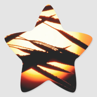 Sky Dewy Meadow Sunrise Oakland Michigan Star Sticker