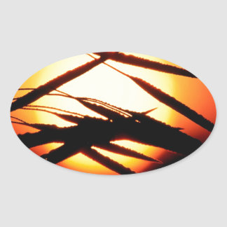 Sky Dewy Meadow Sunrise Oakland Michigan Stickers