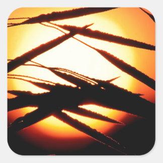 Sky Dewy Meadow Sunrise Oakland Michigan Square Sticker