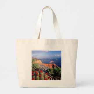 Sky Grand Canyon Spectical Bags