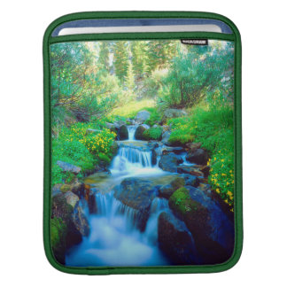 Sky Meadows in the Sierra Nevada Mountains iPad Sleeve