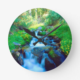 Sky Meadows in the Sierra Nevada Mountains Round Clock