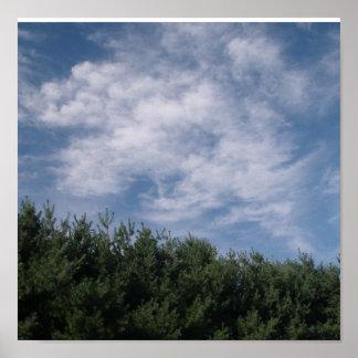 sky n' trees poster