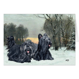 Skye Terriers Snowy Sunset Card