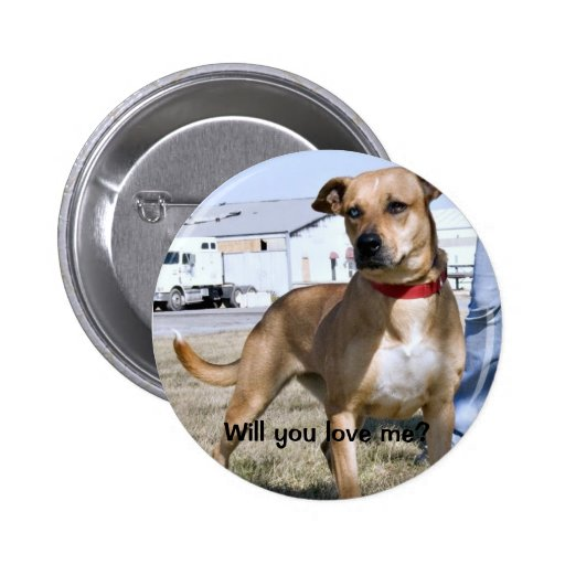 Skylina, Will you love me? button