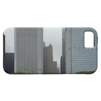 Skyline looking north iPhone 5 cases