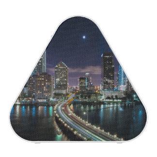 Skyline of Miami city with bridge at night