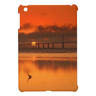 Skyway Bridge iPad Mini Cases