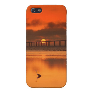 Skyway Bridge iPhone 5 Cover