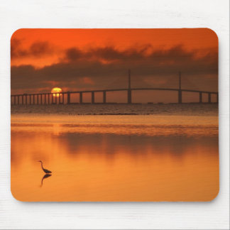 Skyway Bridge Mouse Mat
