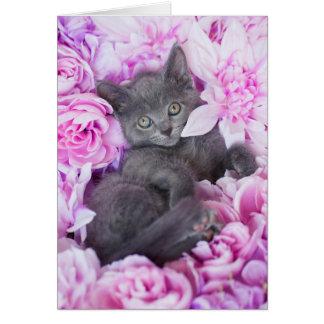 Slater Grey Kitten Purple Floral Card