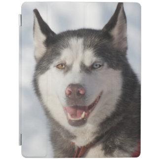 Sled Dog Portrait iPad Cover