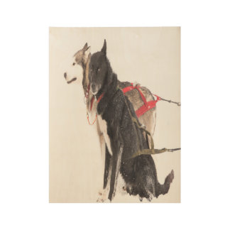 Sled dogs in harness ready to go wood poster