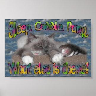 Sleep, cuddle, purr! poster