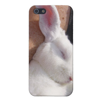 Sleep white Bunny Rabbit Case For The iPhone 5