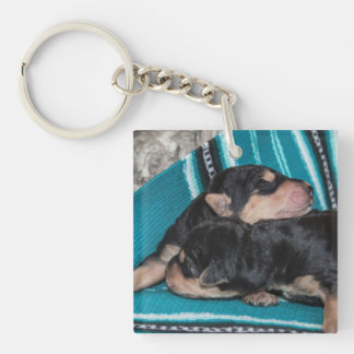 Sleeping Airedale Puppies Double-Sided Square Acrylic Key Ring