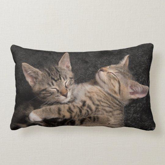 Sleeping baby cats lumbar cushion