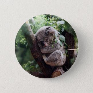Sleeping Baby Koala 6 Cm Round Badge