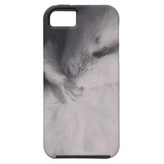 Sleeping baby rabbit photo design. iPhone 5 cases