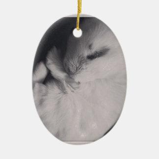 Sleeping baby rabbit photo design. christmas ornament