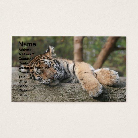 Sleeping Baby Tiger Business Card
