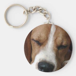 Sleeping Beagle Keychain