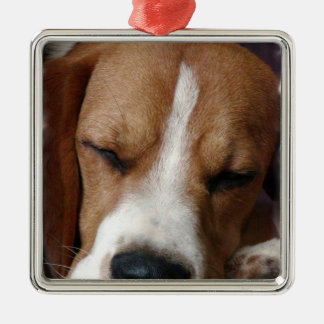 Sleeping Beagle Ornament