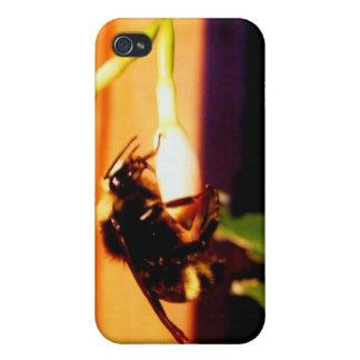 Sleeping Bee iPhone 4 Cases