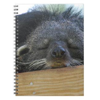 Sleeping Binturong Spiral Notebook