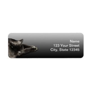 Sleeping Black Cat on Black Gradient Return Address Label