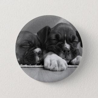 Sleeping Boxer puppies button