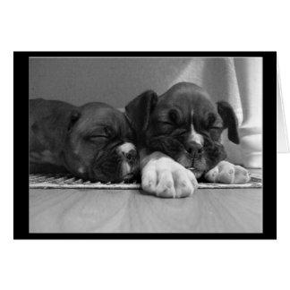 Sleeping Boxer puppies greeting card