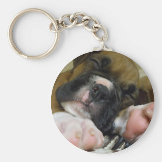 Sleeping Boxer puppy keychain