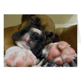 Sleeping Boxer puppy notecard