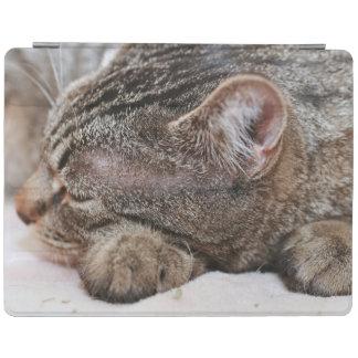 SLEEPING BROWN TABBY KITTEN IPAD CASE iPad COVER