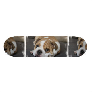 Sleeping Bulldog Skateboard