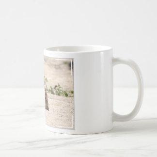 Sleeping Camel Coffee Mugs