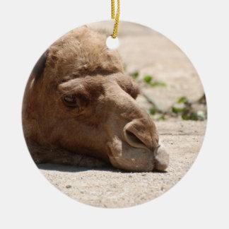 Sleeping Camel Round Ceramic Decoration