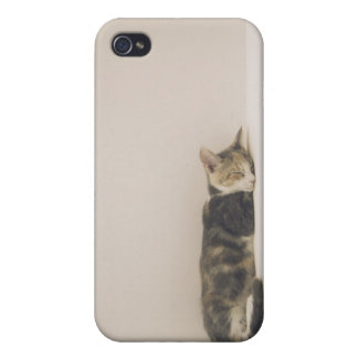 Sleeping cat case for the iPhone 4
