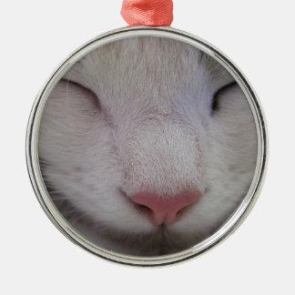 Sleeping Cat Christmas Ornament