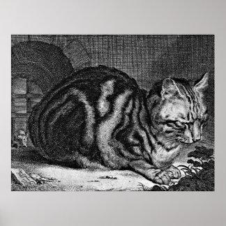 Sleeping Cat Engraving Posters