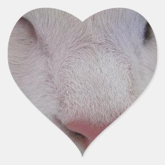 Sleeping Cat Heart Sticker
