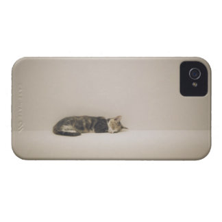 Sleeping cat iPhone 4 case