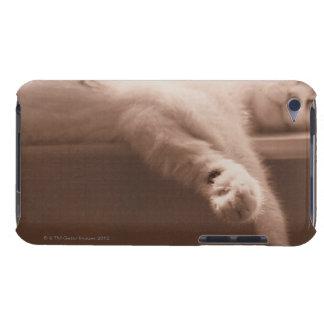 Sleeping Cat iPod Case-Mate Case