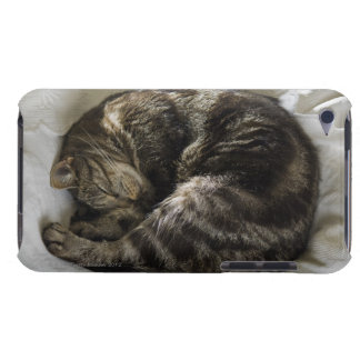 Sleeping cat iPod touch Case-Mate case